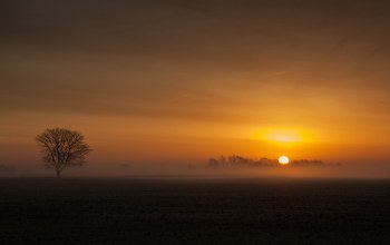 sunrise,Fenland