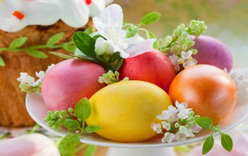 eggs,кулич,decoration,cake,blessed,holiday,яйца,Easter,spring