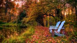 nature,leaves,river,fall,clouds,forest,park,sky,colors,water,autumn,colorful,trees