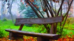 листья,forest,Hdr,park,bench,grass,Road,leaves,walk,trees,autumn,colors,nature