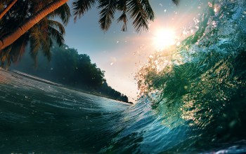 ocean,water,tropical paradise,waves,splash,beautiful sunset scene,Sea ​​wave