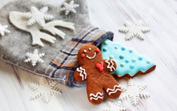 cookie,рождество,gingerbread,decoration,christmas