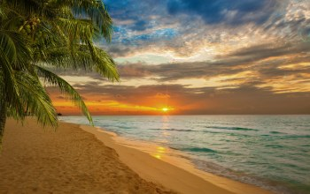 shore,paradise,tropical,beach,sand,Sunset