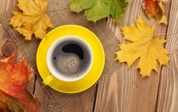 осенние листья,maple,leaves,coffee,клен,fall,autumn,cup