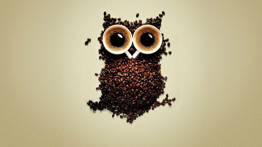 Cups of coffee,coffee,Owl,coffee beans