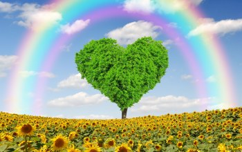 spring,tree,heart,meadow,field,tree,rainbow,Весна