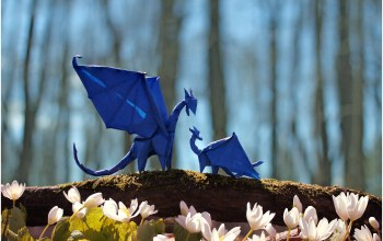 mother,trees,blue,branch,Dragons,puppy,мать,forest,драконы,bokeh