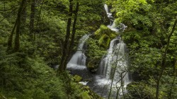 lake district,англия,река,england,водопад,river brathay,Colwith force,Лес