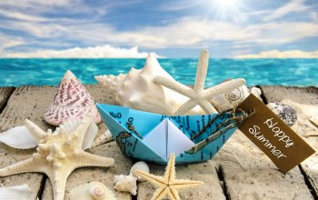 Seashells,starfishes,ракушки,beach,sunshine