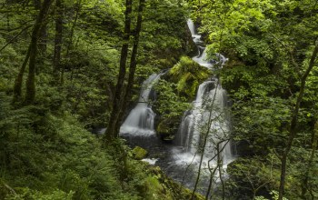 lake district,england,водопад,river brathay,Colwith force
