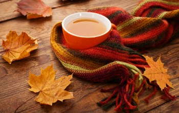 fall,tea,осенние листья,клен,leaves,maple,cup,scarf,autumn