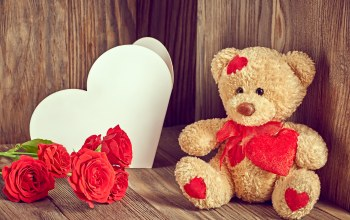 Любовь,Teddy,цветы,Valentines day,roses,heart