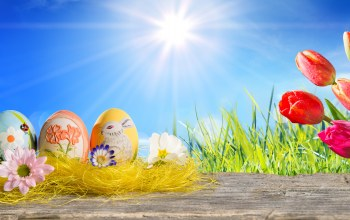 Весна,spring,sunshine,tulips,Easter,happy,яйца,eggs