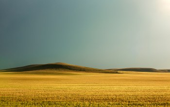 hills,холмы,sunshine,grass,field