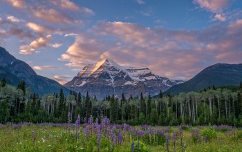 Mount robson,british columbia,canadian rockies,гора робсон,canada