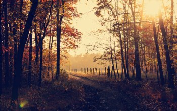 sunrise,countryside,rural,woods,autumn,fall,leaves,forest,trees,path,park,trail