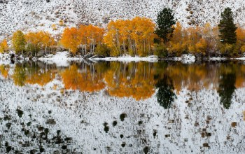 Fall snow,california,bishop creek,refections