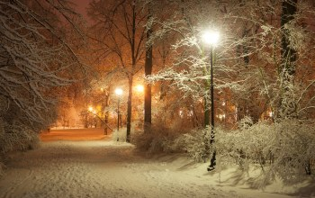 Road,alley,lanterns,Romantic evening,landscape,lamppost,winter park,beautiful scene