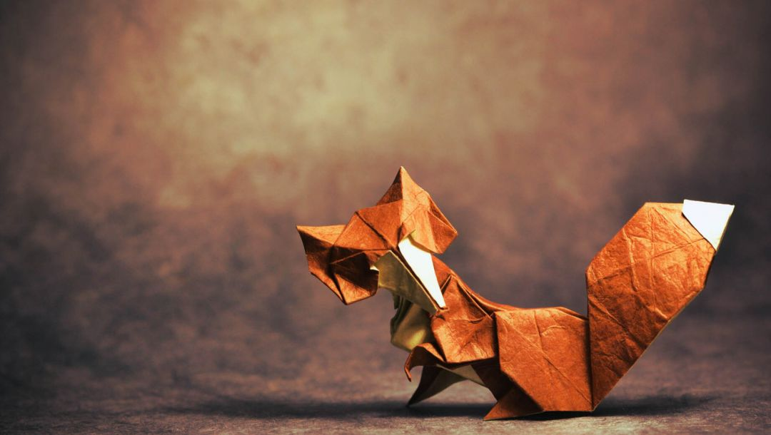 looking,тень,tail,shadow,Origami,хвост,Fox,глядя