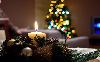 christmas tree,christmas,candle