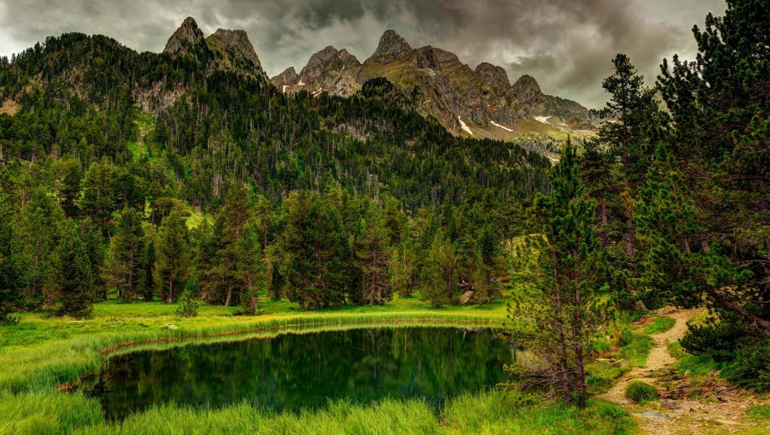 sky,forest,park,trees,landscape,view,clouds,scenery,mountains,river,water