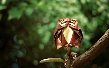 forest,Owl,сова,branch,Origami
