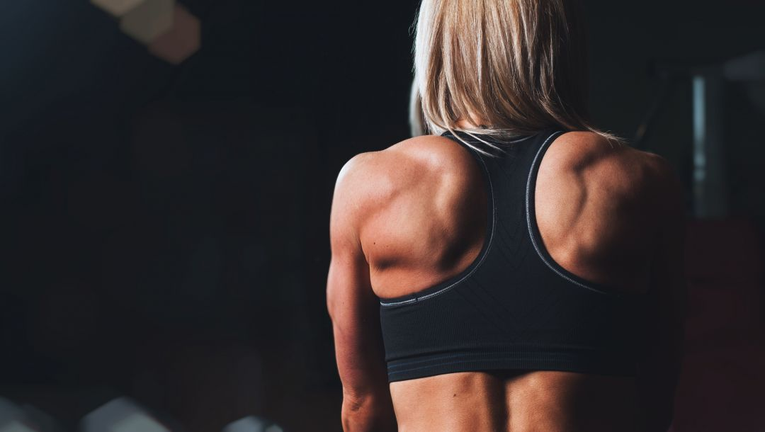 training,Back muscles
