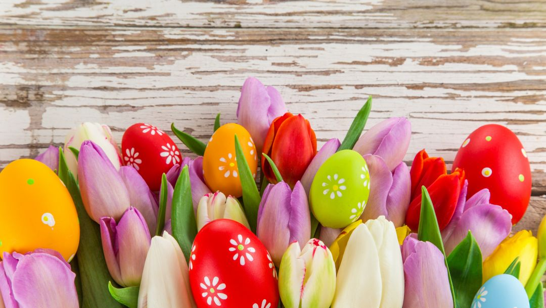 spring,Easter,colorful,eggs,яйца,цветы,tulips