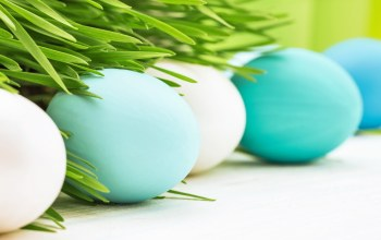 happy,яйца,decoration,eggs,spring,цветы,Easter