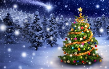Merry,decoration,christmas,snow,winter,tree