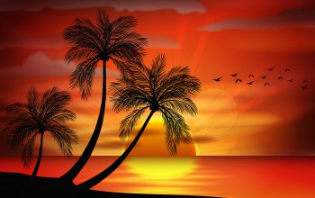island,vector,Sunset,tropical,paradise,palms