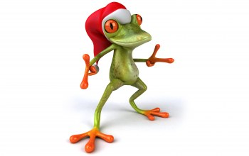 santa hat,christmas,Frog,Лягушка,funny