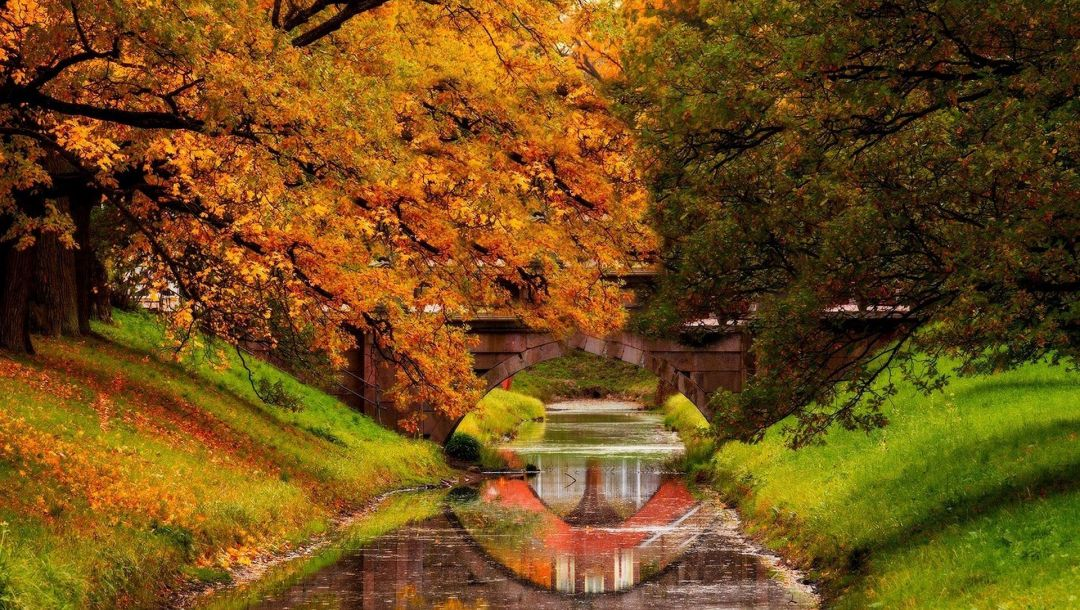 trees,fall,walk,colorful,park,leaves,colors,forest,water,Nature river,autumn