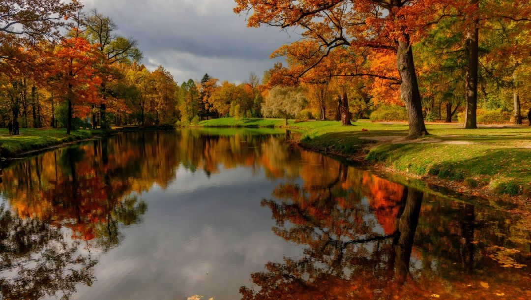 forest,river,leaves,colorful,park,clouds,fall,colors,water,sky,trees,autumn