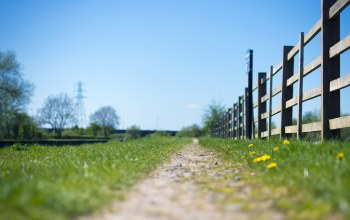 power line,path,sunny,sky,grass,fence