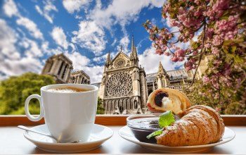 завтрак,croissant,spring,france,coffee,breakfast,cup,cathedral,notre dame,paris