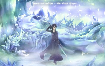 Sword art online,asakurashinji