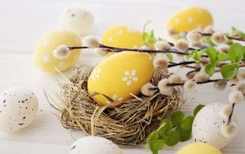 willow,eggs,decoration,happy,цветы,Easter,spring,яйца
