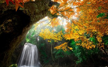 forest,water,autumn,leaves,trees,colors,colorful,waterfall,fall,park