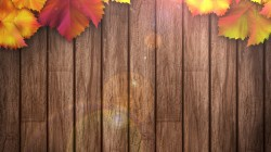 дерево,texture,colorful,осенние листья,фон,autumn,wood,leaves