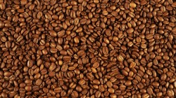 pattern,coffee beans,many