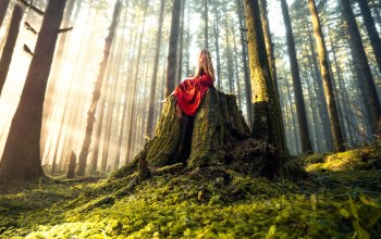 Lizzy gadd,woodland magic,платье