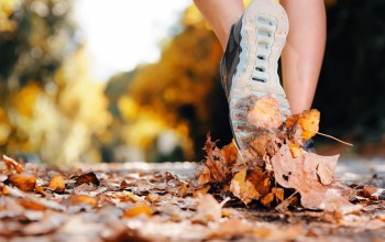 leaves,sports shoes,exercise,Walking