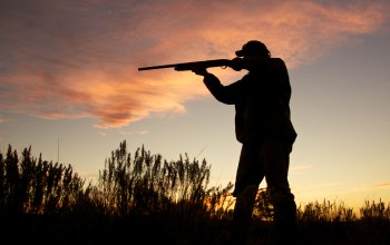 evening,Shotgun,Hunter