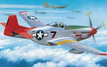painting,aviation,war,P-51 d mustang,aircraft,ww2,tuskegee airmen