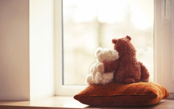 Window,Teddy,friends,cute,мишка,Медведь,couple,toy