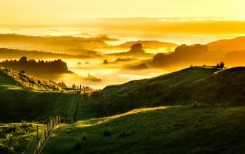 golden sunrise,foggy,new zealand