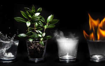 glass cup,4 elements,water,earth,fire
