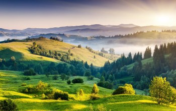 Green hills,fields,trees,landscape