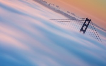 fog,golden gate bridge,Cityscape
